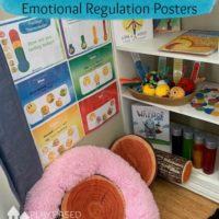 feelings thermometer emotional regulation