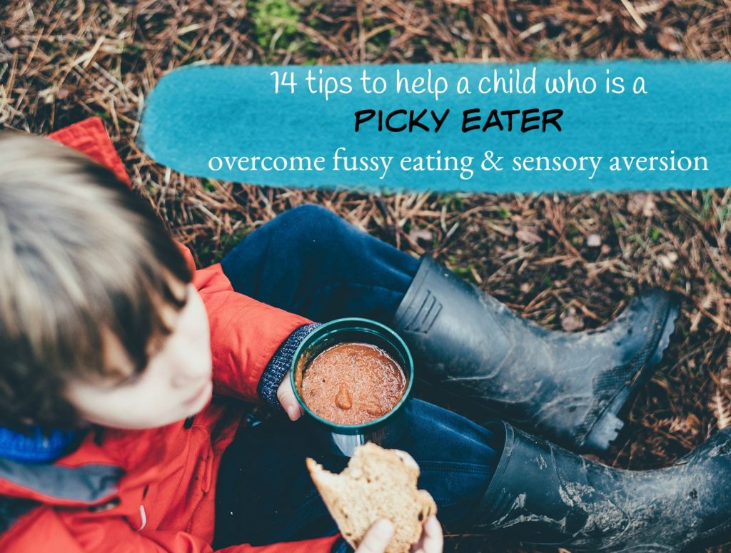 help my child who is a pciky eater fussy eater